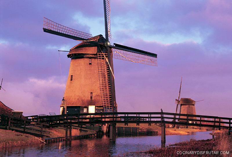 4 Quesos holandeses que debes conocer
