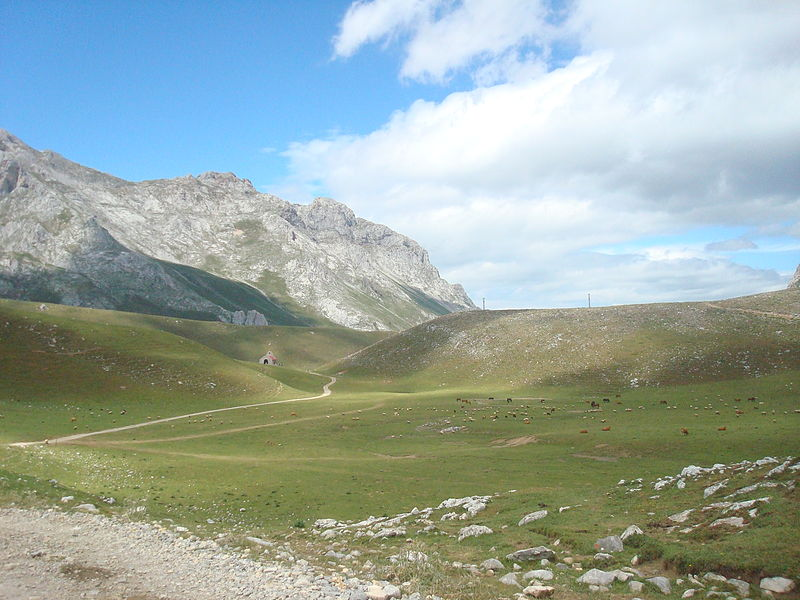 Quesucos ahumados de Cantabria. Aroma de montaña.