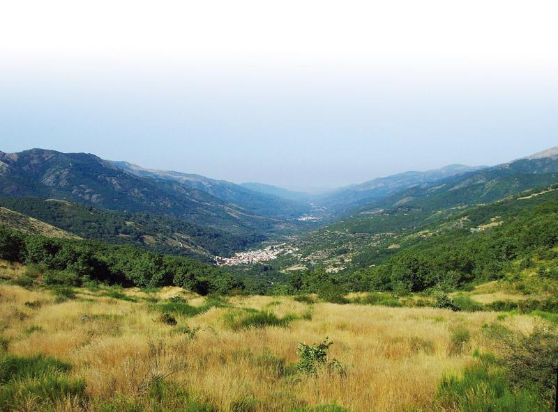 Valle del Jerte. Picota y truchas.